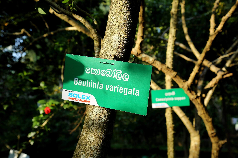 CSR CAMPAIGN AT RAGAMA DHARMARAJA VIDYALAYA.
