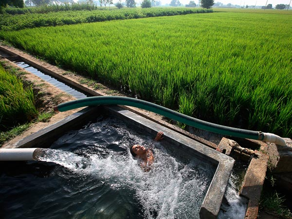 Children play and bathe in an irrigation water tank for rice fields